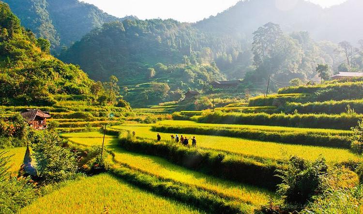 湖南省沅陵县借母溪乡,毗邻张家界的自然保护区.