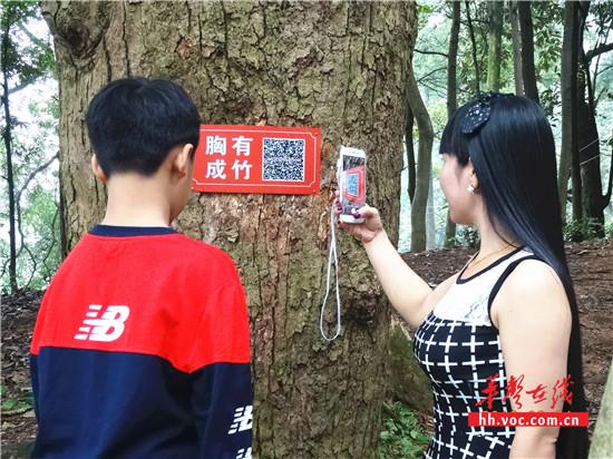 旅客扫描古树二维码_副本_副本.jpg