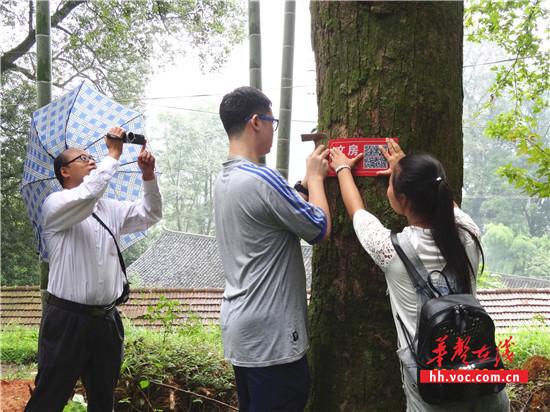 """会同三中学生正在为古树挂""""二维码身份证""""_副本_副本.jpg"""